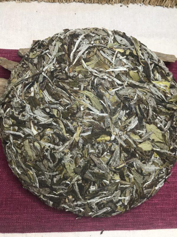 Fuding White Peony Tea